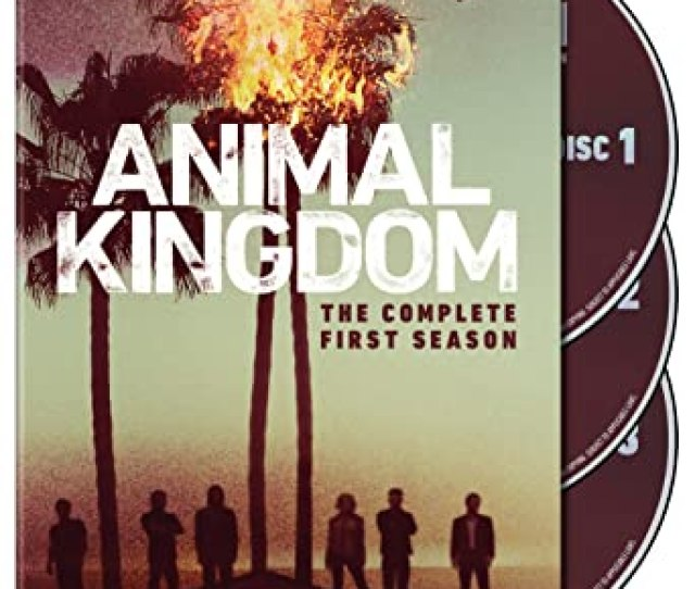 Animal Kingdom The Complete First Season