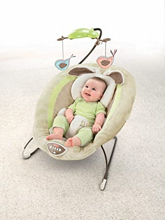 Fisher-Price-My-Little-Snugabunny-Bouncer-Reviews