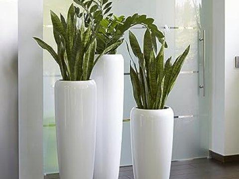 blumenkübel weiß moderne & hochwertige pflanzvase/pflanzk�bel – gro�: cm - hochglanz wei�  - fiberglas - mit einsatz – indoor & outdoor – wetterbest�ndig &