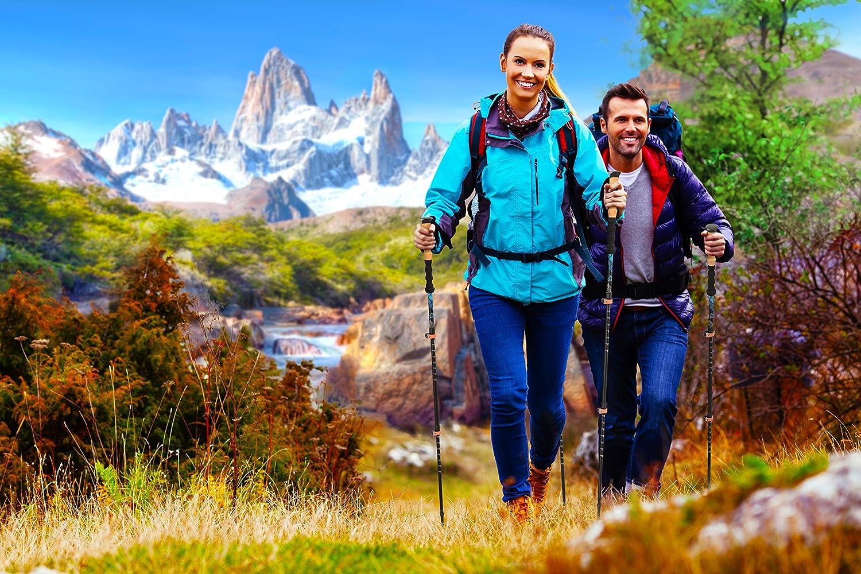 Alpine Summit Hiking/Trekking Poles with Anti-Shock Tips