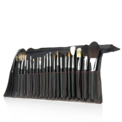 Pro Silk 20 Piece Cosmetic Brush Set & Roll Case