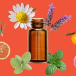 Are Essential Oils Safe 13 Faqs On Ingestion Pregnancy Pets More