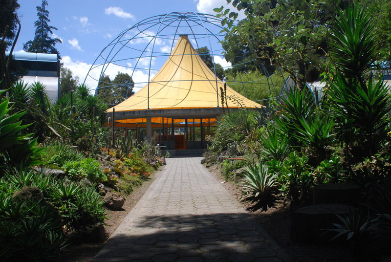 quito botanical gardens jardin