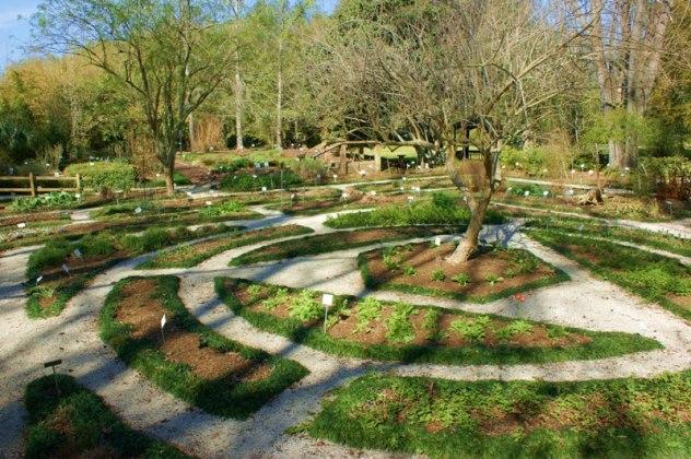 Top 10 most beautiful Botanical Gardens in Florida