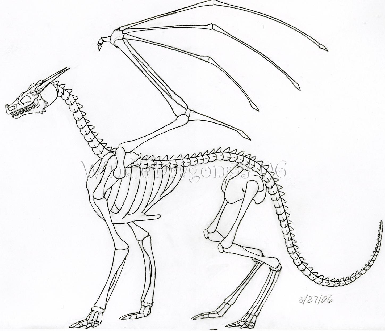 Dragon Skeleton By Win Dragon On Deviantart