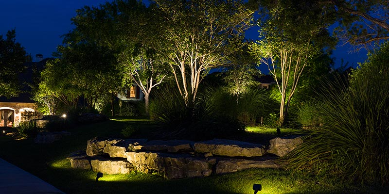 tree uplighting techniques for spring