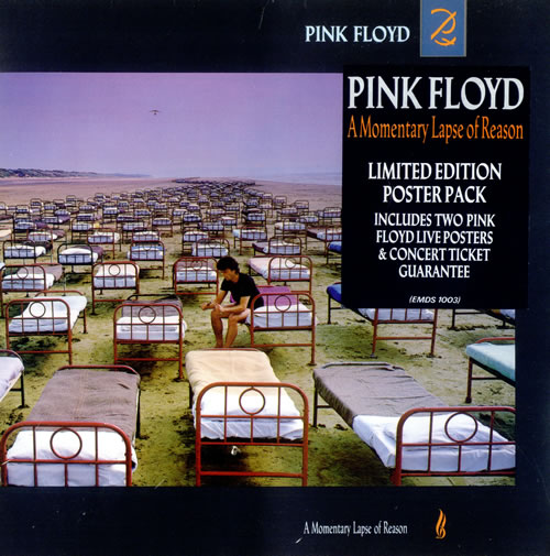 Poster do filme A Momentary Lapse of Reason