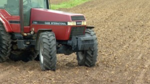 Corn Farmers Face Possibility of Scrapping Whole Season