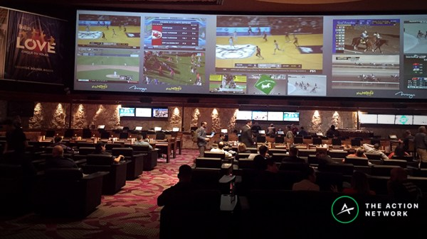 las vegas sports network - 800×450