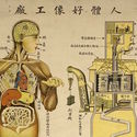 "Chinese public health poster depicting the body as a machine (1930). Image Cortesia de ""Are We Human"" / 3. Istanbul Tasarim Bienali"