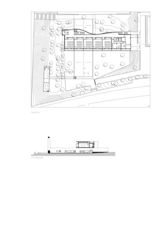 Floor Plan / Section