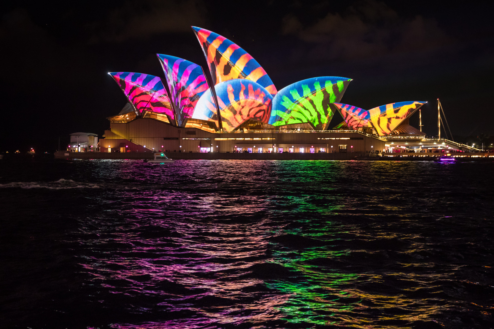 The Sydney Opera House Comes to Life (Literally) With ...