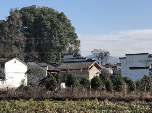 Village. Image © Xuguo Tang