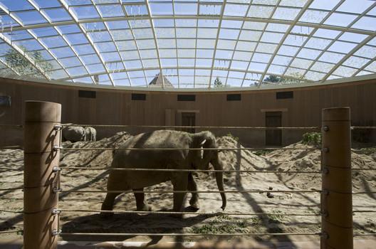 1195_FP288794_medium Elephant House / Foster + Partners Architecture