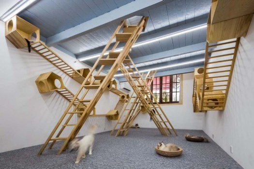 ladder in the second floor. Image © Qingling Zheng, Shijie Zhang
