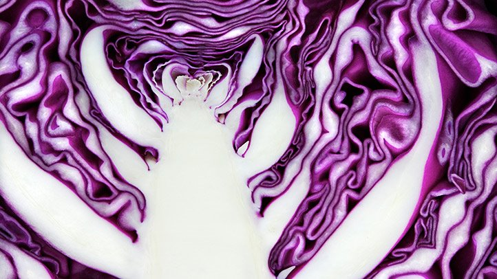 low-carb cabbage for a diabetes-friendly diet