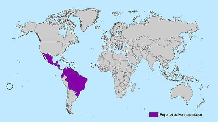 cdc zika map