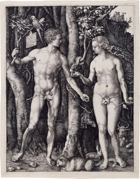 adam and eve religion albrecht d�rer