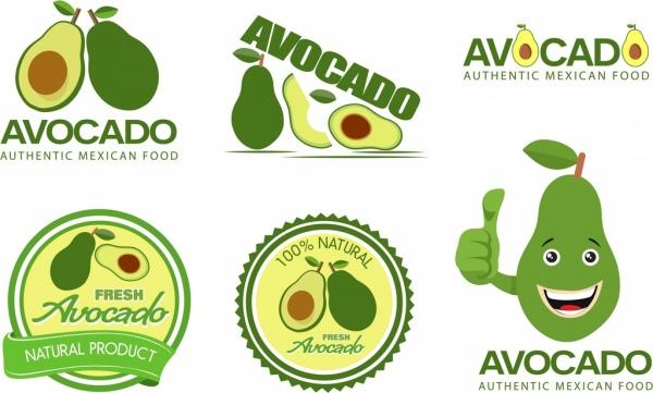 Avocado Vector Free Vector Download 58 Free Vector For