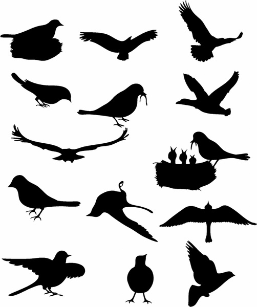 Birds Flying Free Vector Download 3981 Free Vector For
