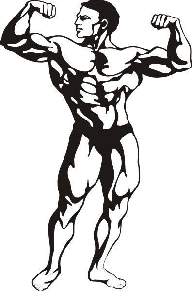 Bodybuilding Free Vector Download 33 Free Vector For