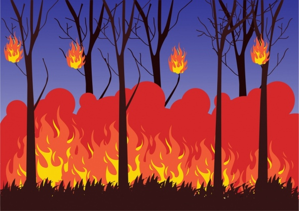 Image result for forest fire images cartoon