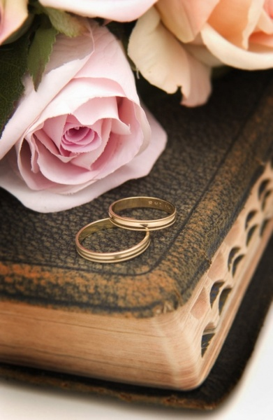 Holy Bible Pictures Free Stock Photos Download 264 Free