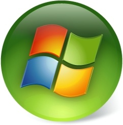 This is an example of the Windows Vista and 7 Start Button.