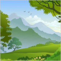 free forest landscape trees