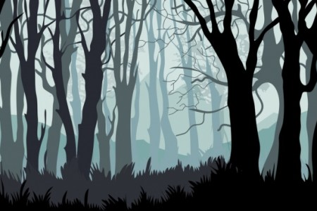 Top Dark Forest Background Drawing FULL HD P For PC Free Download Afficher L