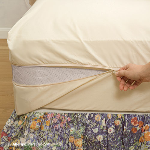 Solus Organic Cotton Dust Mite Mattress Covers