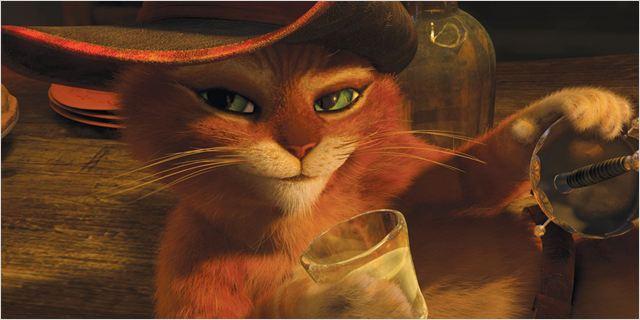 Le Chat Potté, véritable séducteur...