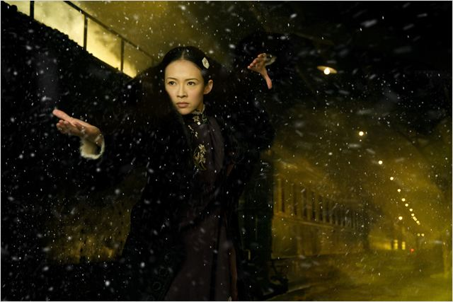 The Grandmaster : photo Zhang Ziyi