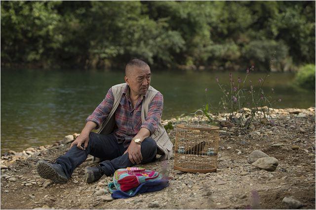 Le Promeneur d'oiseau : Photo Baotian Li