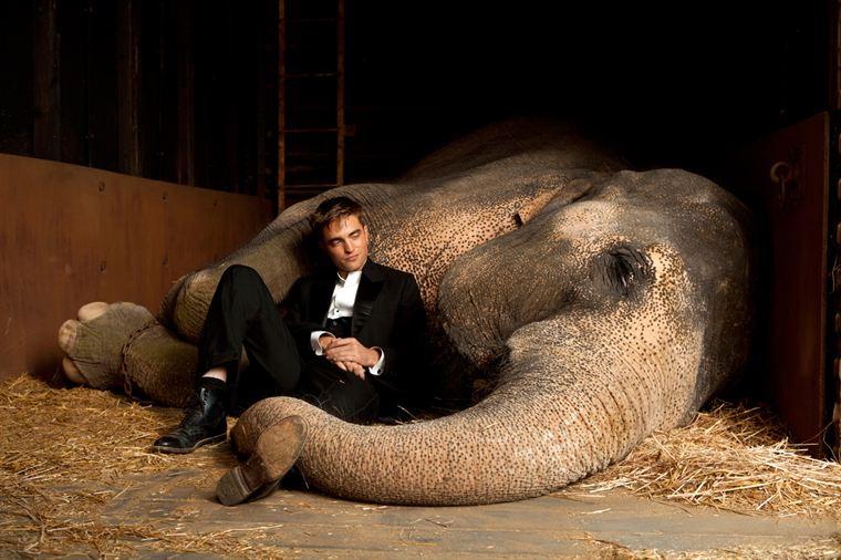 Jacob (Robert Pattinson) et Rosie (Tai) l'éléphante