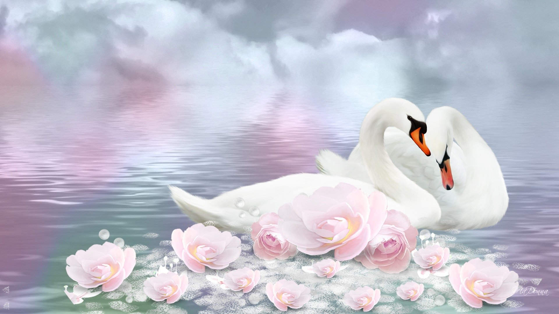 63 swan hd wallpapers | backgrounds - wallpaper abyss