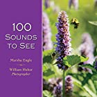 100 Sounds to See by Marsha Engle
