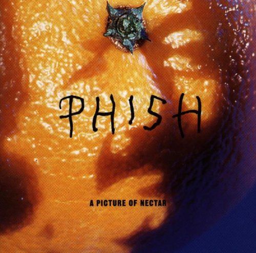 PHISH Download Albums Zortam Music