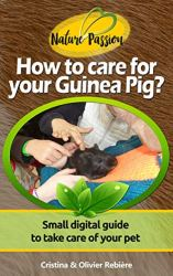 How to care for your Guinea Pig?