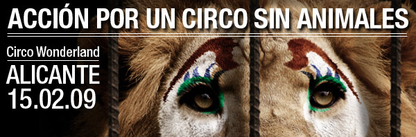Acción por un circo sin animales