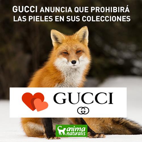 Gucci prohibirá las pieles en sus colecciones