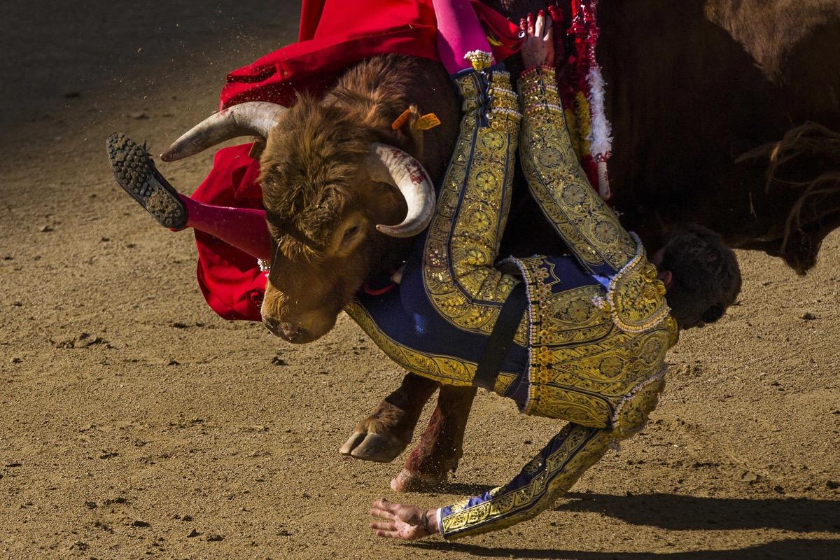Se levanta la suspensión de ley que prohíbe la muerte de los toros en Baleares