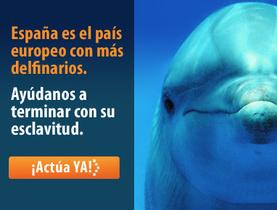 AnimaNaturalis lanzará en Mallorca su campaña por el cierre de los delfinarios