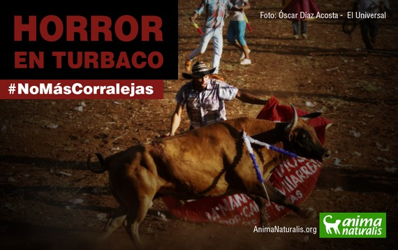 Horror en Turbaco