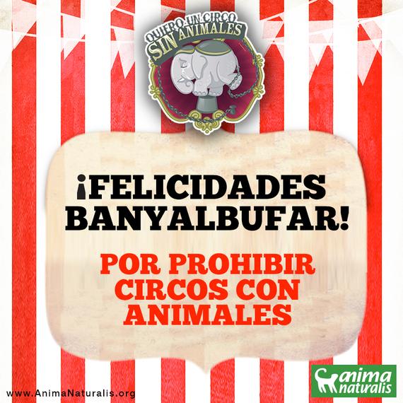 Banyalbufar veta la entrada a circos con animales por unanimidad