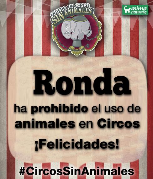 Ronda prohibe los circos y atracciones con animales por unanimidad