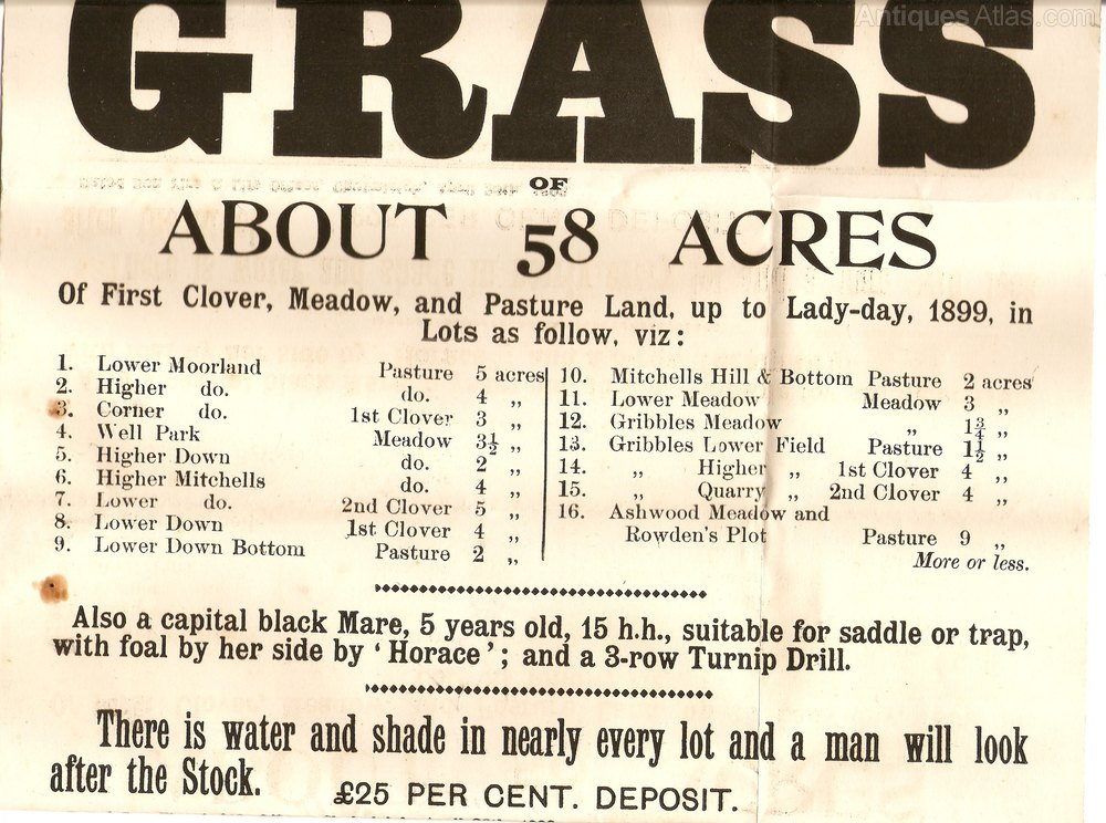 Antiques Atlas Black Amp White Sales Poster Dated 1898