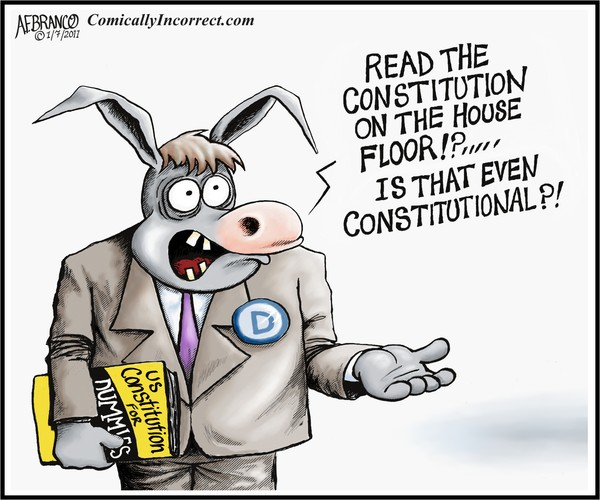 Image result for constitution cartoon
