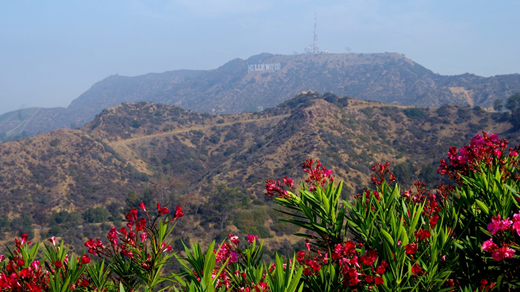 view-hollywood-sign