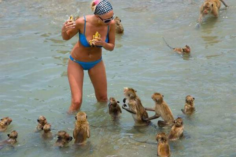 Sneak Attack-18 Hilarious Beach Fails That Will Make You Laugh Out Loud